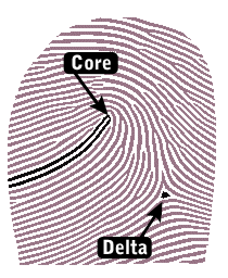 diagram-delta-core.png